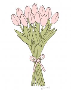 pink tulips illustration