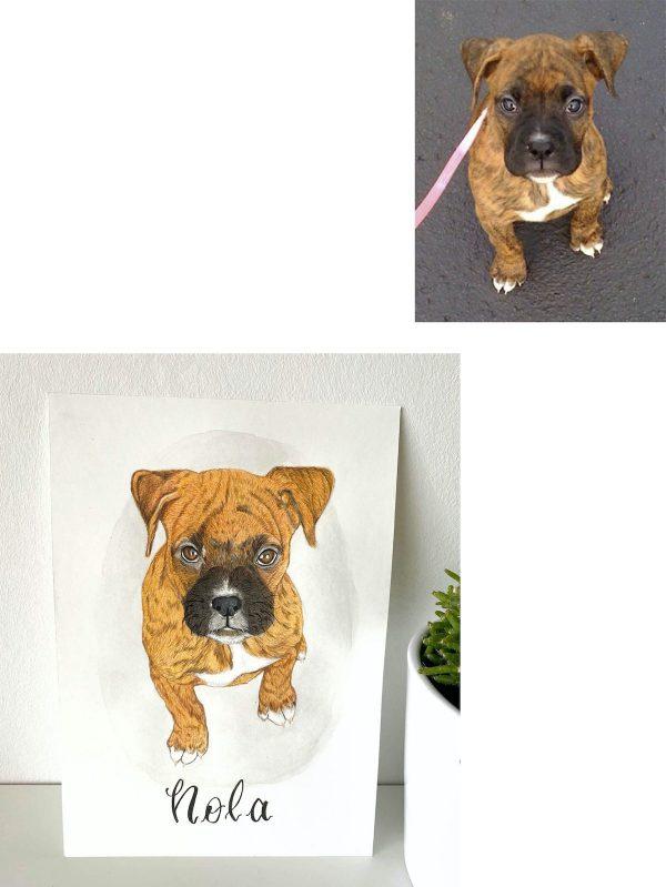 boxer puppy portrait art commission