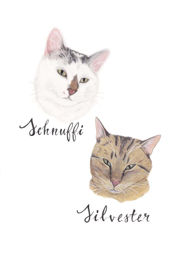 illustrated cat portrait