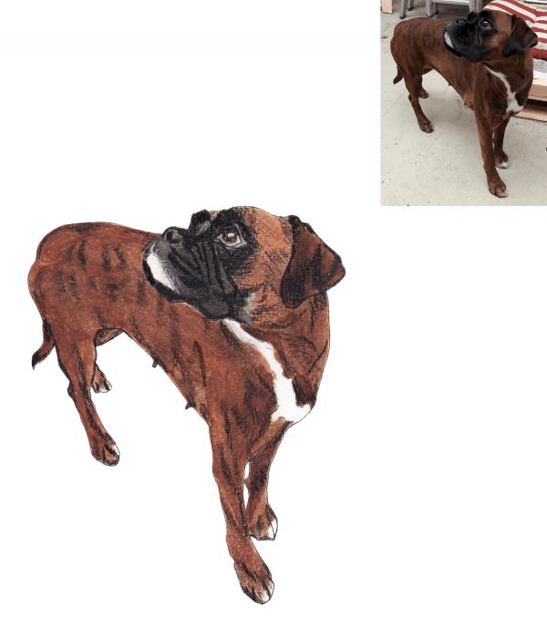 pet portrait commission - online order