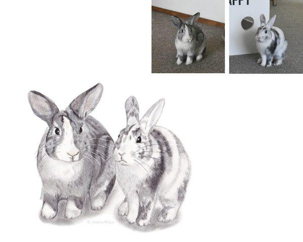 rabbits artwork
